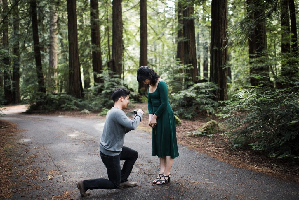 point-reyes-tree-tunnel-engagment-57