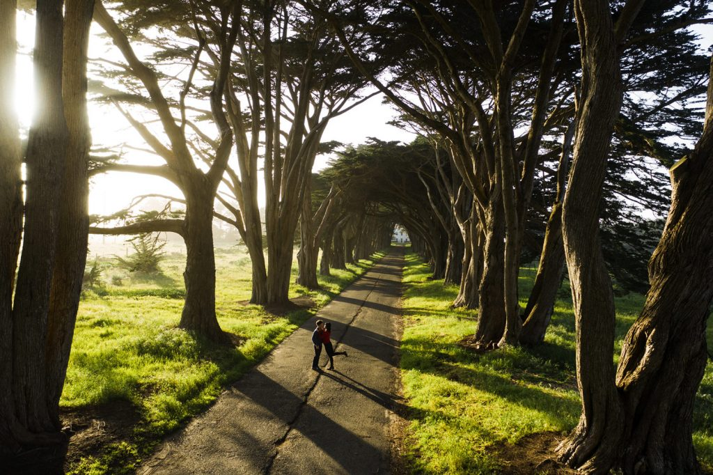 point-reyes-tree-tunnel-engagment-88