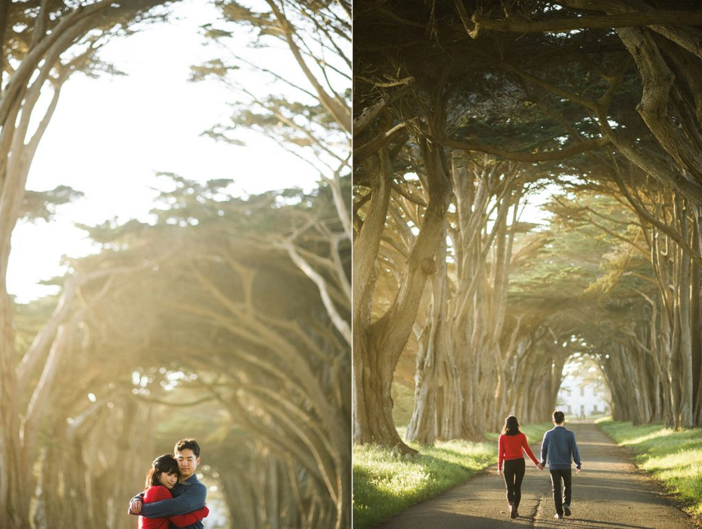 point-reyes-tree-tunnel-engagment-96